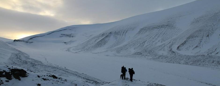 longyearbyen-wild